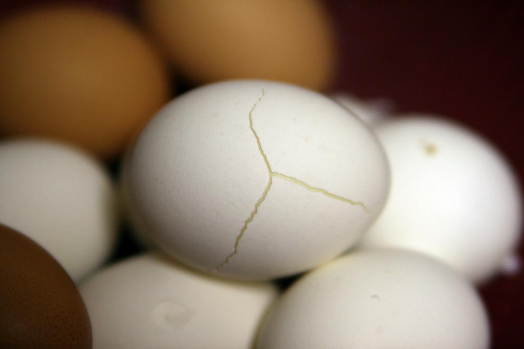EggsCreativeCommons